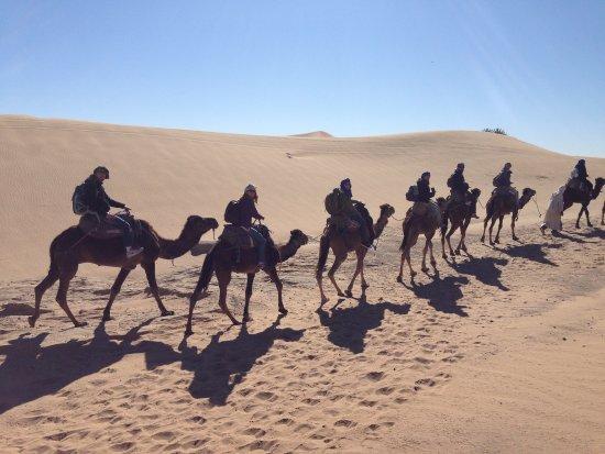 Region Marrakesch-Tensift-El Haouz, Marokko: Camino en dromedario hasta la jaima. Una forma increíble de revivir las costumbres bereberes.
