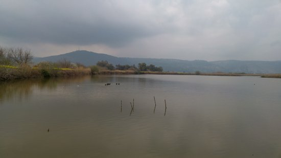 Galilee, Israel: תצפית מהמצפור