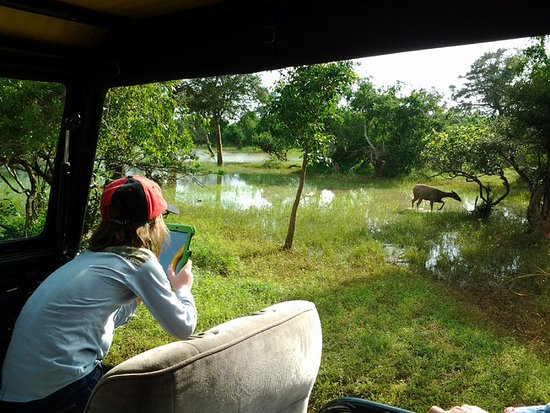 Tangalle, Sri Lanka: Yala Natinal Park
