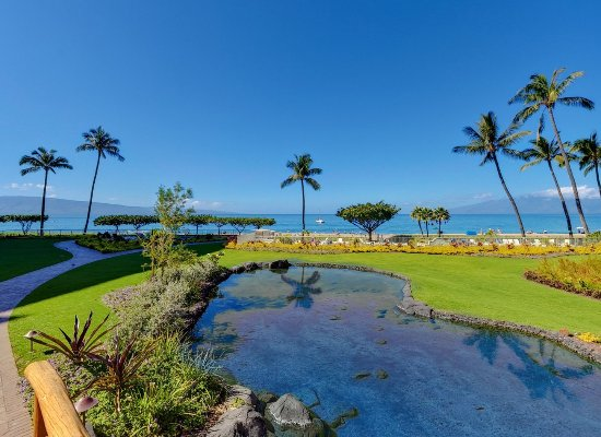 Aston at The Whaler on Kaanapali Beach  UPDATED 2017 Prices