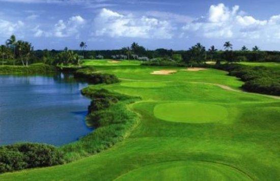 Hawaii Prince Hotel Waikiki: Golf Course