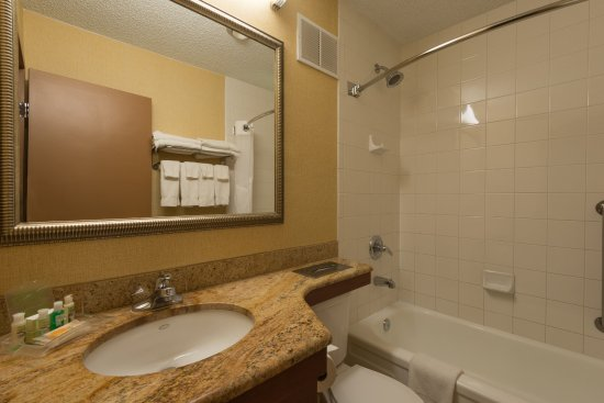 Holiday Inn Steamboat Springs: Guest Bathroom