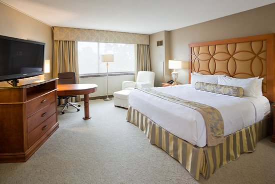 Plymouth, MN: Executive King Room