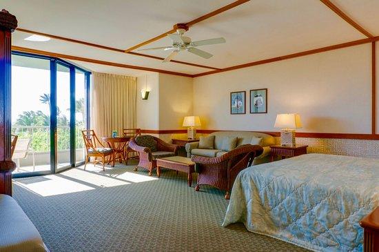 加納帕里酒店