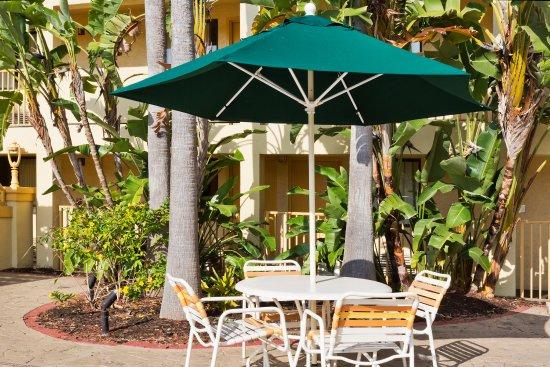 La Quinta Inn Tampa Near Busch Gardens: Courtyard