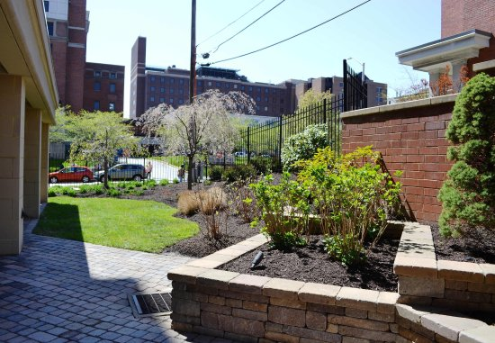 Courtyard Pittsburgh Shadyside: Courtyard