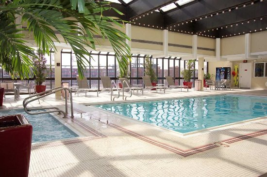 Hilton St. Louis at the Ballpark: Indoor Pool