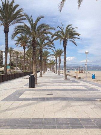 Playa de San Juan: photo5.jpg