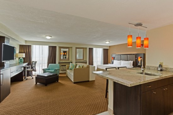 Miami Springs, FL: Newly Refreshed Executive King Suite