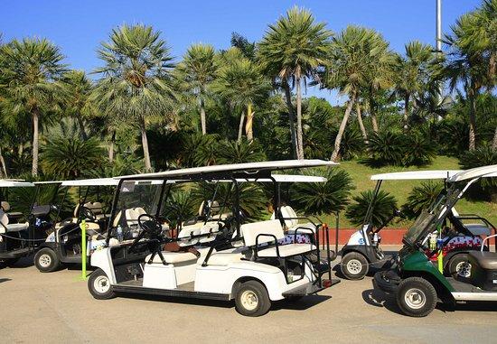 Lady Lake, Φλόριντα: Golf Cart Parking