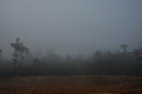Landscape - Picture of The Kaduhithlu Resort, Sakleshpur - Tripadvisor