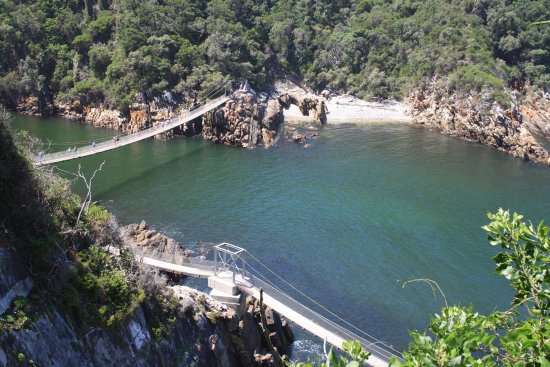 Tsitsikamma National Park, South Africa: The suspension bridges