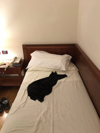 Hotel Genova: Bed