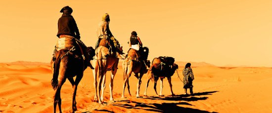 Marrakech Desert Tour: camel riding