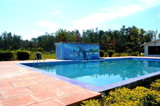 Corbett Treat Resort Dhela Hotel Reviews Photos Rate Comparison Tripadvisor