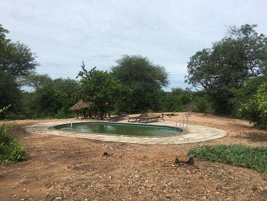 Ruaha National Park, Tanzania: photo3.jpg