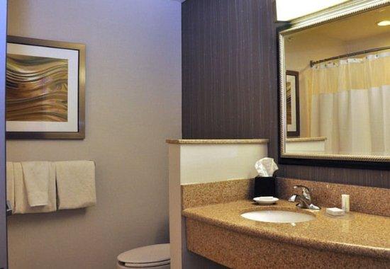 คิงส์ตัน, นิวยอร์ก: Suite Bathroom