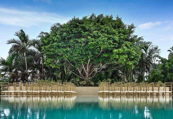 Courtyard Miami Coconut Grove: Poolside Patio - Ceremony