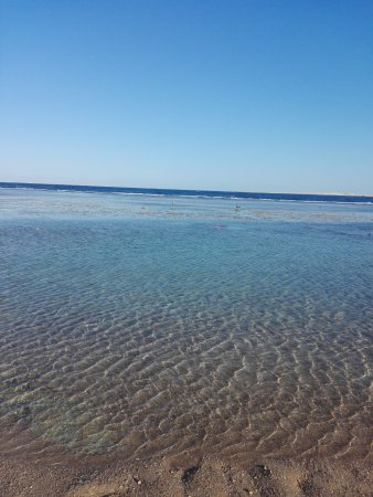Radisson Blu Resort, Sharm El Sheikh: Beach