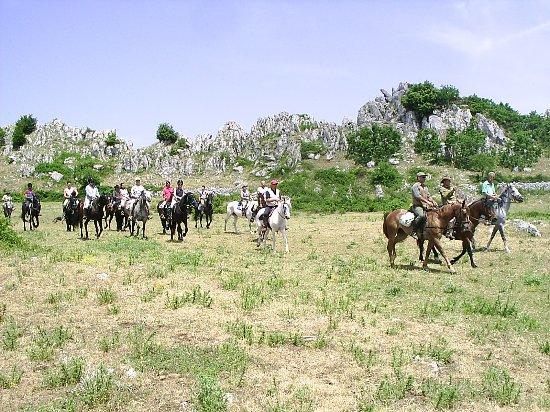 A.S.D. Centro Equestre Posta Ruggiano del Gargano