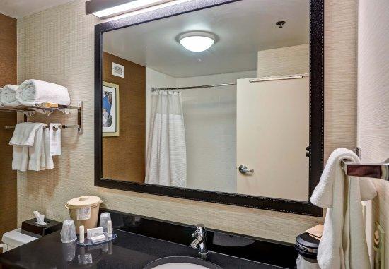 Christiansburg, Βιρτζίνια: King Suite Bathroom