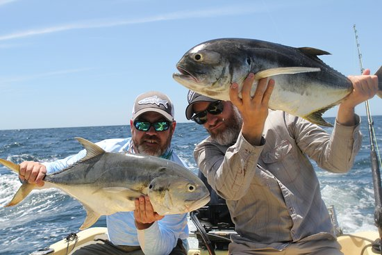 Playa Flamingo, Costa Rica: Jack Crevalle