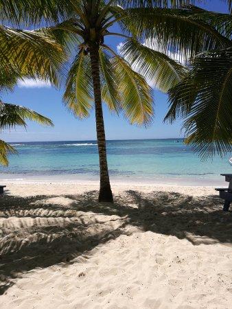 Bayahíbe, República Dominicana: Isola Saona