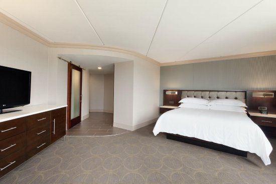 Hilton Philadelphia City Avenue: New King Corner Room Photo