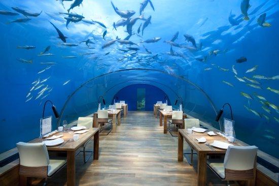 جزيرة رانجالي: Ithaa Undersea Restaurant