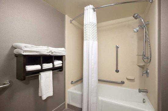 Hampton Inn Cadillac: Accessible Room Bathroom
