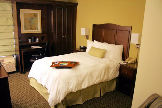 Hampton Inn Kansas City Airport: Accessible Double Bed