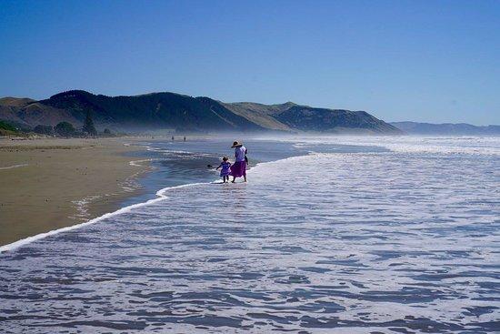 Havelock North, Nueva Zelanda: Waimarama beach is about 20 mins drive away