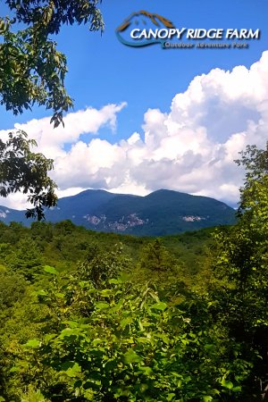Lake Lure, NC: The view from one of the ziplines at Canopy Ridge Farm