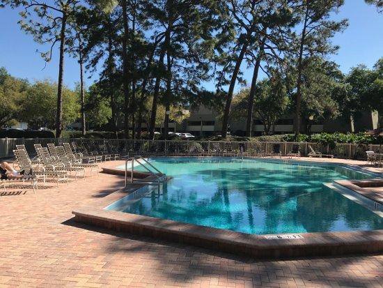 Palm Harbor, FL: Pool for our unit