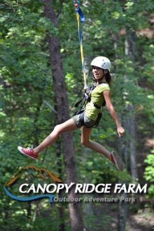 Lake Lure, NC: Zipline at Canopy Ridge Farm