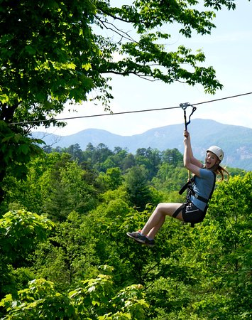Lake Lure, NC: High Flying Fun at Canopy Ridge Farm Ziplines
