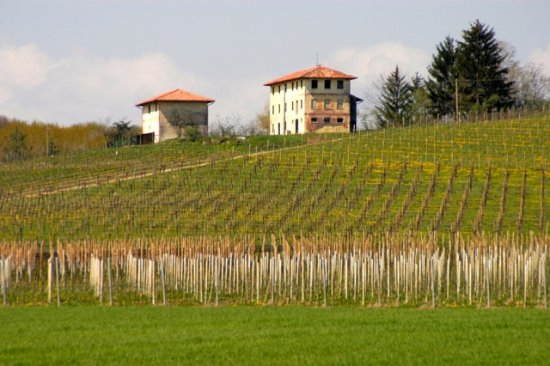 Susegana, Италия: Case coloniche e vigne