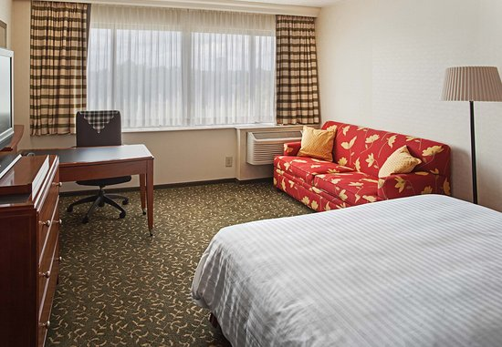 Southfield, MI: King Guest Room with Sofabed