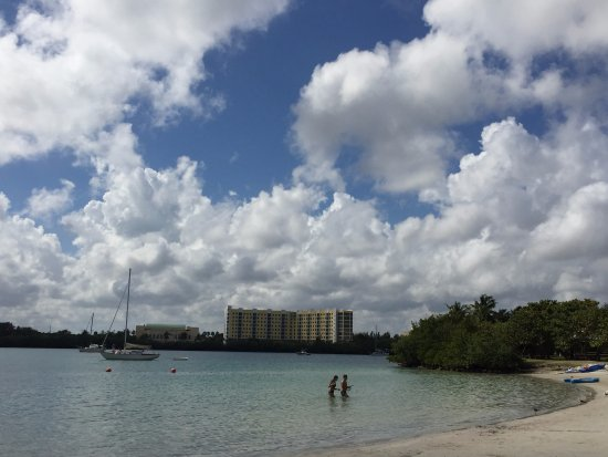 North Miami Beach, FL: Beautiful day!