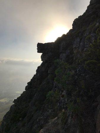 Hike Table Mountain: photo3.jpg