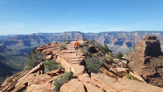Cedar Ridge Picture Of South Kaibab Trail Grand Canyon