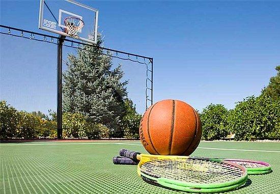 Residence Inn Fort Collins: Sport Court