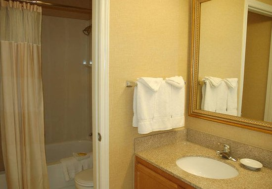 San Mateo, Californië: Deluxe Penthouse Suite Bathroom