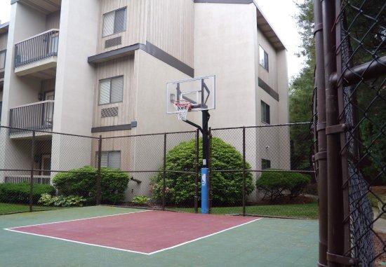 Plainview, État de New York : Sport Court