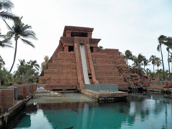 Marine Habitat at Atlantis Photo