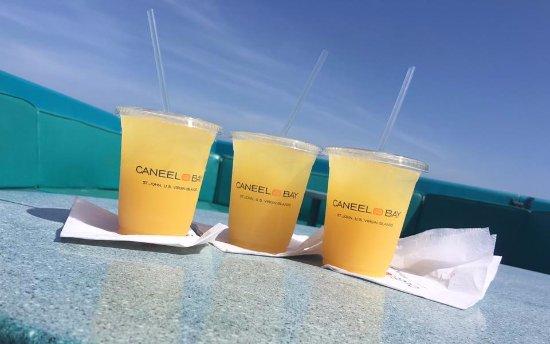 Caneel Bay照片