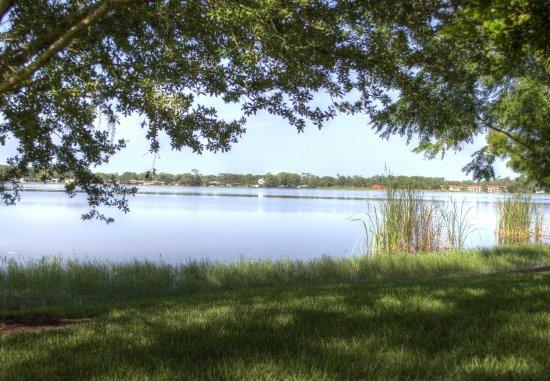 Sebring, FL: Little Lake Jackson