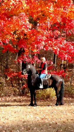 Sunset, SC: Breath-Taking Fall Rides!!