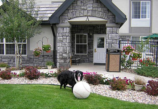 Englewood, CO: Pets Welcome!