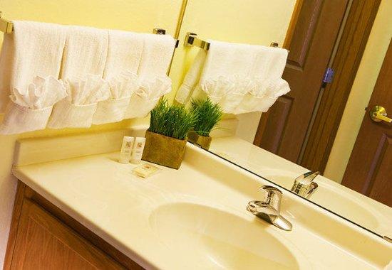 TownePlace Suites Milwaukee Brookfield: Suite Bathroom